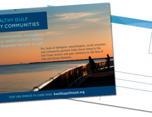 Healthy Gulf, Healthy Communities: 2011